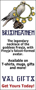 Freyja's falcon-form with the mystical necklace Brisingamen available on T-shirts and gifts here!