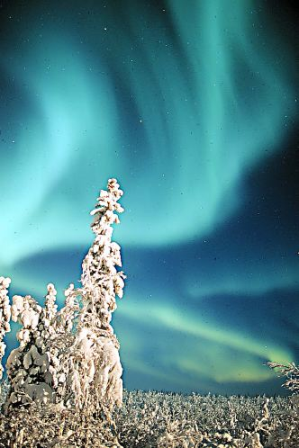 Aurora photographed in Alaska