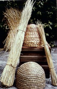 Traditional straw skeps